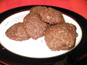 Taste It Thursday!  –  Cocoa Chia Cranberry Cookies & Hearty Hemp Apricot Energy Balls
