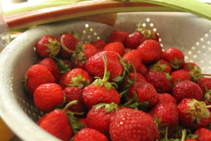Strawberry Fields Forever…Making Healthy Jam