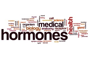 Hormones word cloud