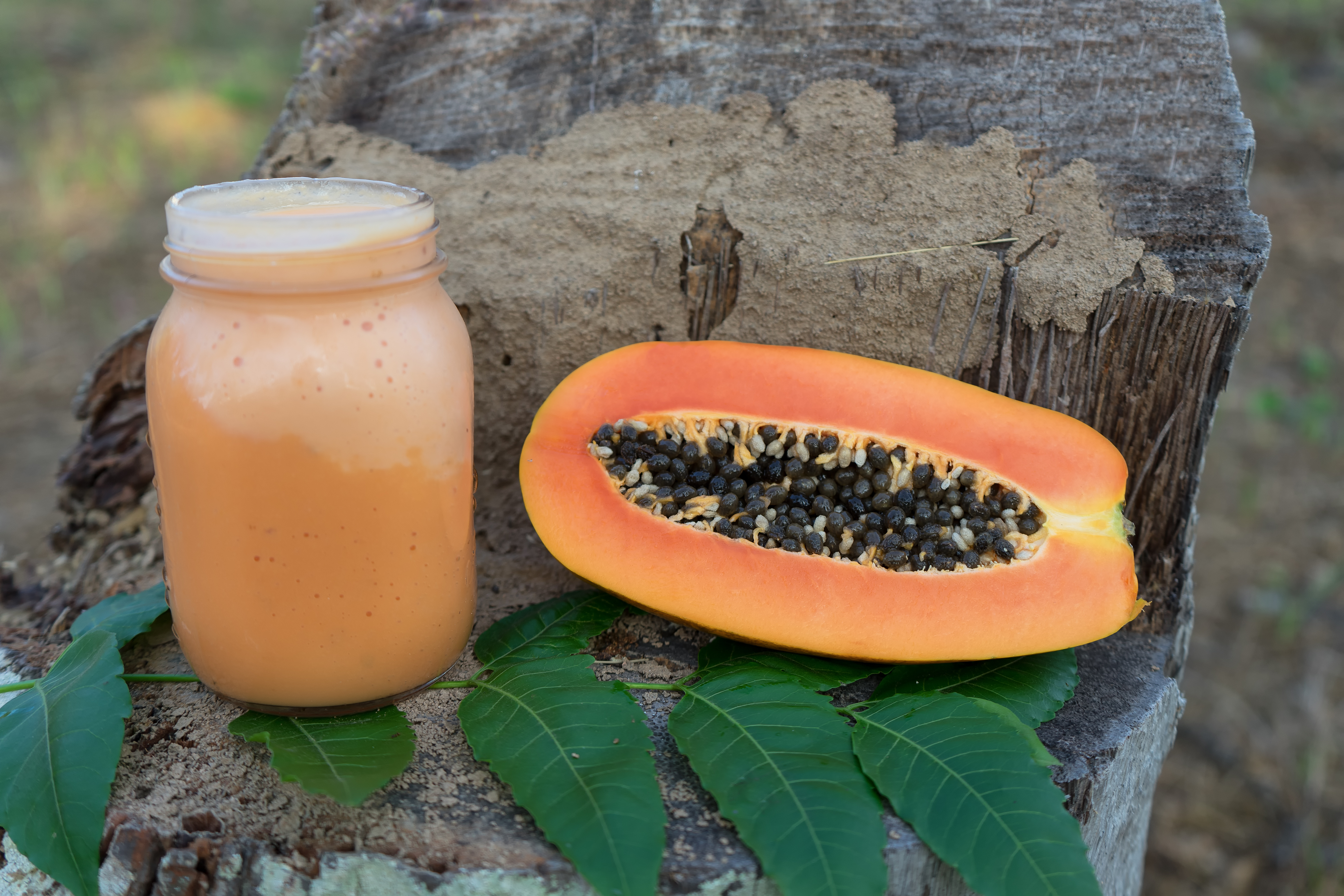 healthy fruit smuoothie with a papaya in bank, sweet fruit, healthy nutrition
